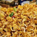 Heimische Pilzsorten erkennen – Zwei besonders leckere Speisepilze für die aromatische Küche